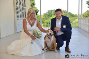 esküvői-fotók0631